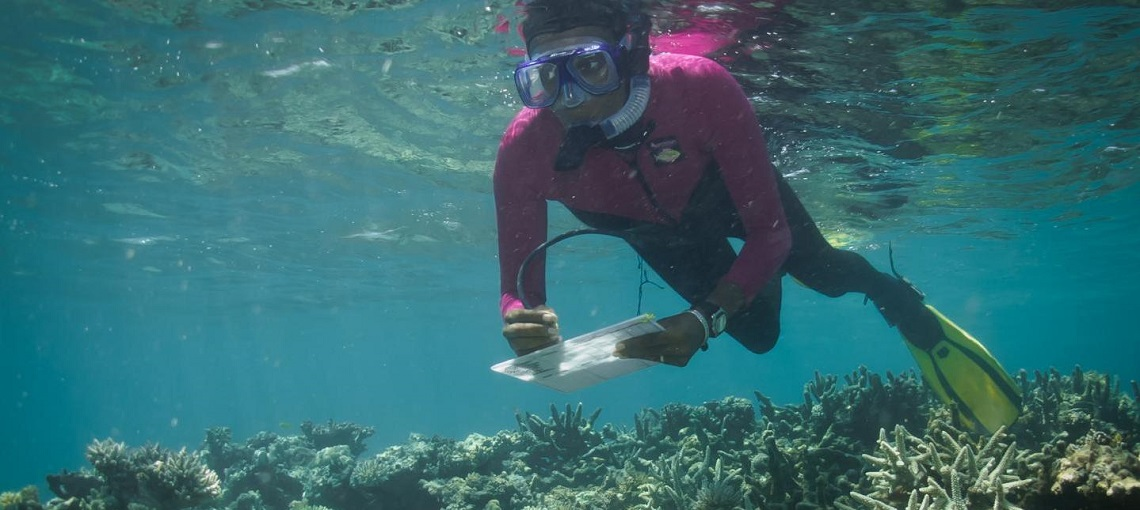 Communities Restore Degraded Reefs